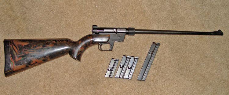 AR-7 with magazines