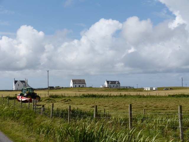 Crofts, Haymaking, Machair