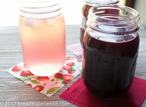 Berry Shrub Syrup-Infused Water