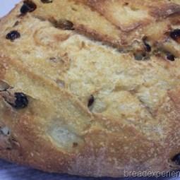 Golden Raisin Bread: Mellow Bakers