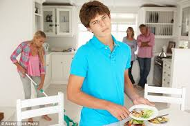 The Domestic Life Of A Christian Youth