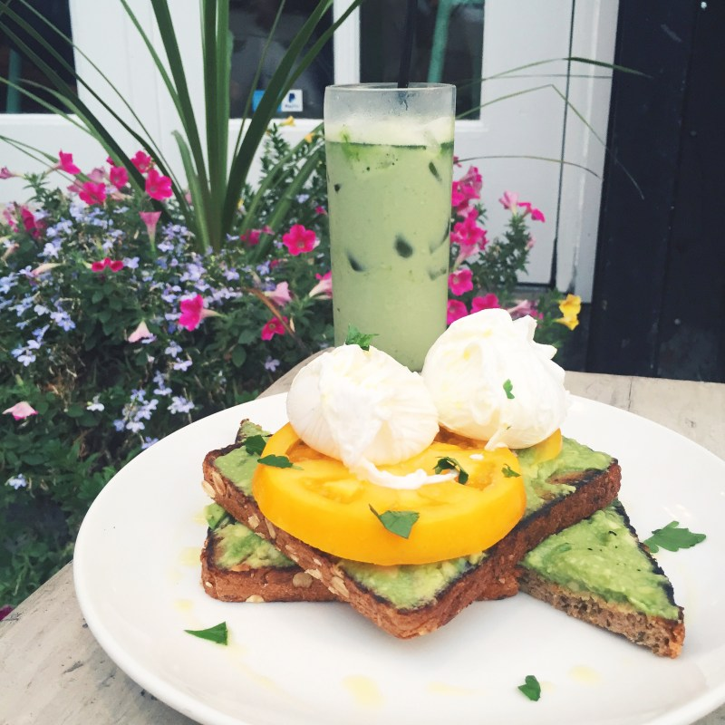 Egg Shop NYC review Avocado Toast