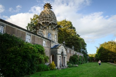 Dunmore Pineapple Folly