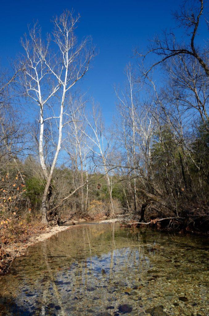 Piney Creek, Piney Creek Wilderness