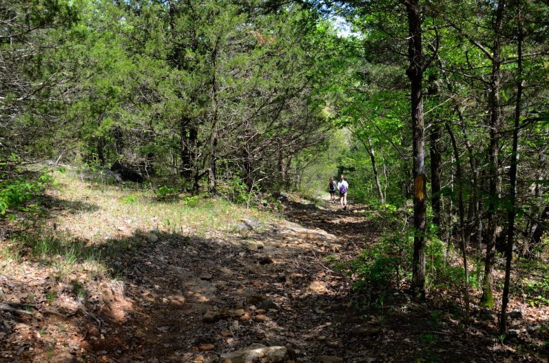 Dropping down off of the ridge. Copyright © 2012 Gary Allman, all rights reserved.