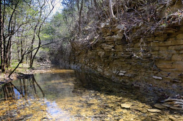Devil's Den Creek