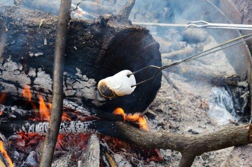 Toasted marsh mellows
