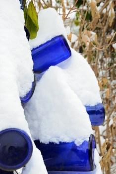 Snow on Blue Bottles