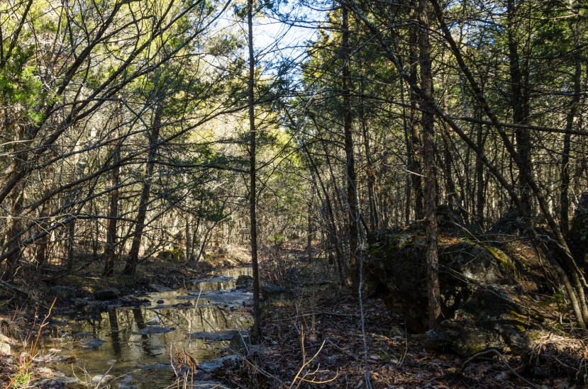 Small creek on the Yellow / Silver Trail