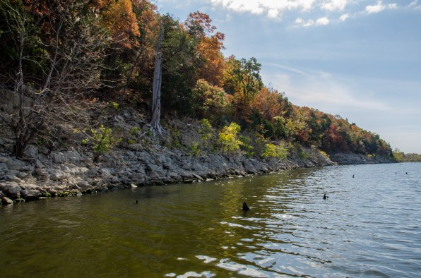 Fall at Pomme de Terre Lake, Missouri. Copyright © 2015 Gary Allman, all rights reserved.