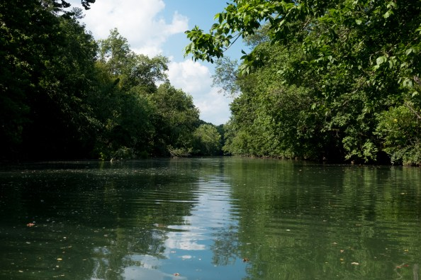 Photograph of the James River Northeast of HWY 60, Springfield Missouri