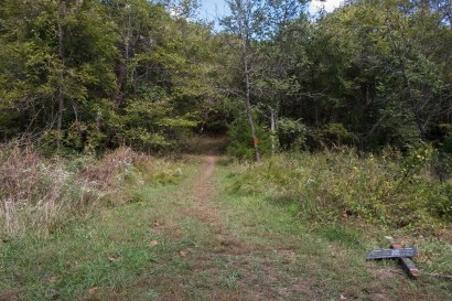 Busiek State Forest and Wildlife Area. Orange Trail. October 1, 2016   www.ozarkswalkabout.com   Copyright © Gary Allman, all rights reserved