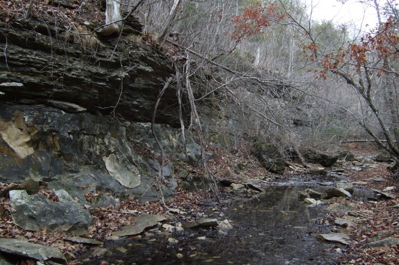 After breaking camp we dumped our packs and explored a creek bed that runs up into the rather ominously named Devils Den. The geology is quite striking with the highly layered rock on top of a thick un-layered base. Copyright © 2010 Gary Allman, all rights reserved.