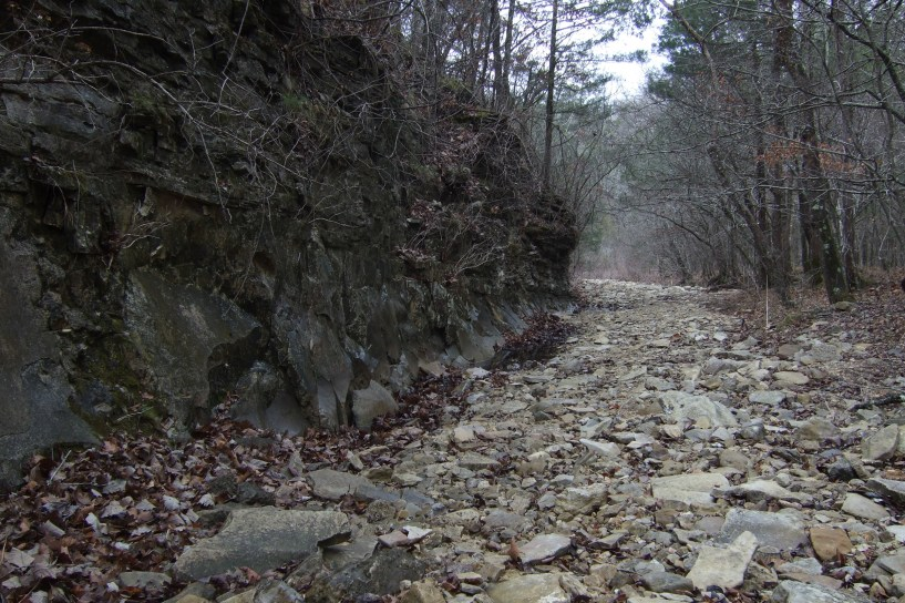 Dry creek creek bed leading into Long Creek. Copyright © 2010 Gary Allman, all rights reserved.