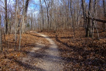 Busiek White Trail in December