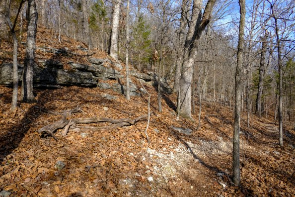 Trail and rock