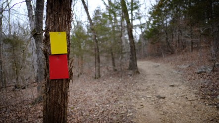 New trail markers. Copyright © 2018 Gary Allman, all rights reserved.