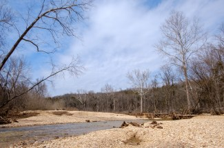 Woods Fork, Busiek