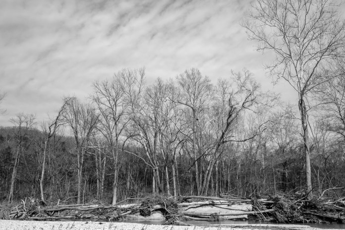 Flood Damage, Woods Fork, Busiek