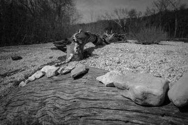 Rocks on Wood