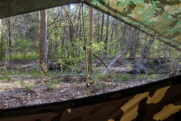 Morning view from my hammock. April 30, 2018 | www.breakfastinamerica.me | Copyright © 2018 Gary Allman, all rights reserved