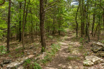 The first two thirds of the trail runs along a ridge. Copyright © 2018 Gary Allman, all rights reserved.