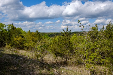 The Ozarks - View to the northeast from the Pees Hollow Trail. Copyright © 2020 Gary Allman, all rights reserved.