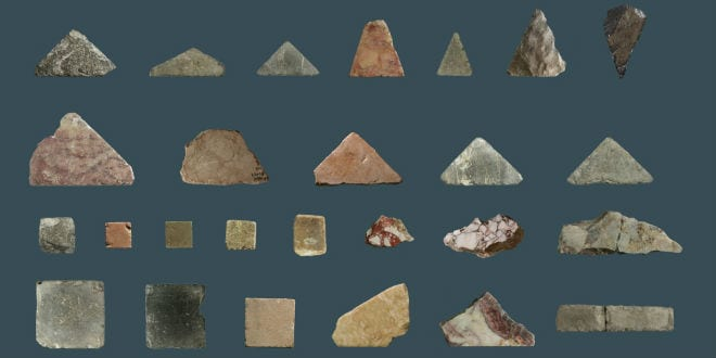 Collection of Herodian floor tiles believed to be part of the Second Temple complex. (Temple Mount Sifting Project/Zachi Dvira)
