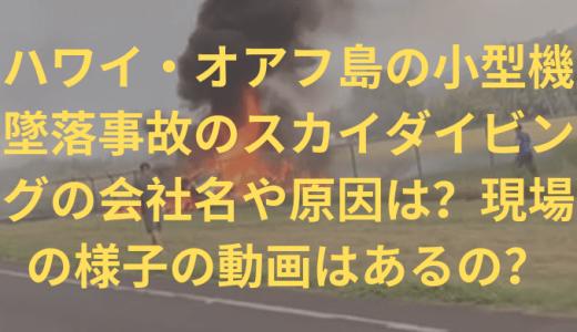 ハワイ・オアフ島の小型機墜落事故のスカイダイビングの会社名や原因は?現場の様子の動画はあるの?