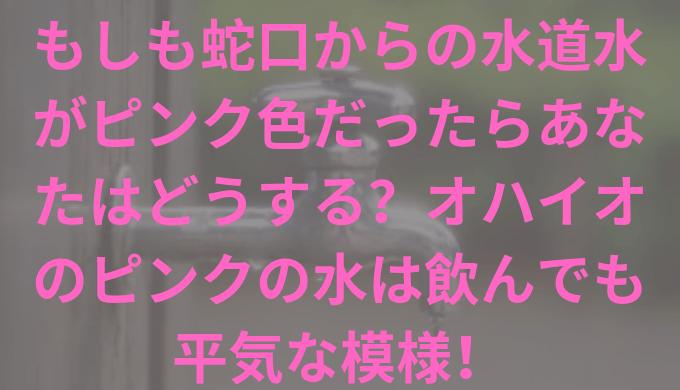 jaguchi-title