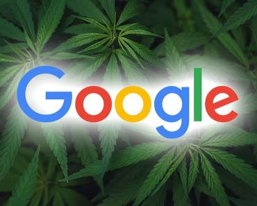 New Jersey Google Searches 'How to Roll a Joint' Surges ... After Legalizing Weed