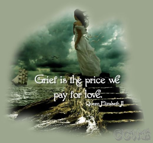 Grief is the price is we pay for love.