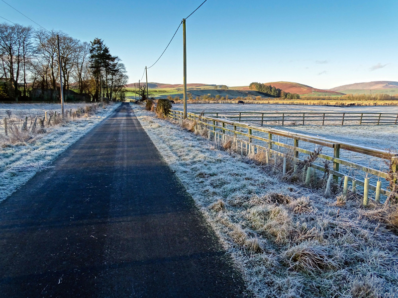 Frosted lane in Powburn