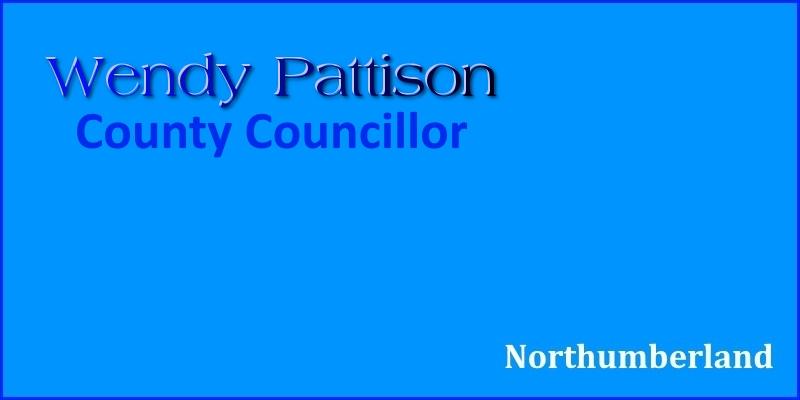 Meet Wendy Pattison County Councillor header