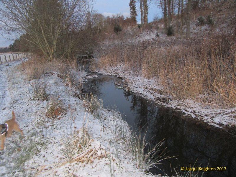 Around in the snow 1 Jacqui Knighton 2017