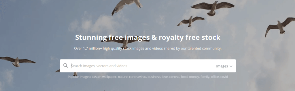 Pixabay is a vibrant community of creatives, sharing copyright-free images and videos