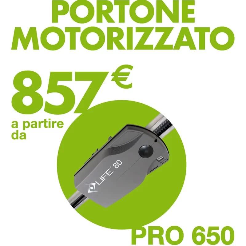 Portone Motorizzato a €857