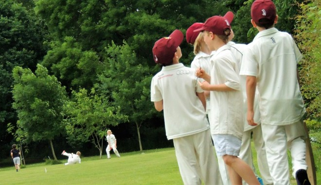 junior cricket cancelled