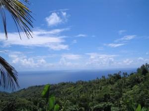 Guest cottage vista