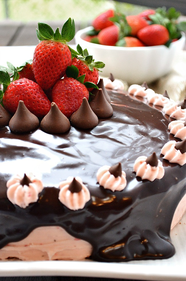 "There are no words for this decadent Gluten Free Chocolate Cake with Strawberry Buttercream and Dark Chocolate Ganache...except for bold, delicious, chocolatey strawberry goodness! This is a ""lick your plate clean"" kind of cake, so throw those manners out the window!"