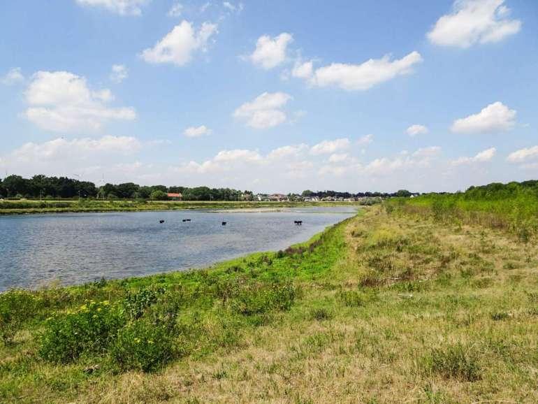 Borgharen struinnatuur Maastricht Rivierpark Maasvallei bregblogt.nl