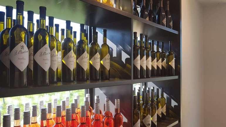 Wijngaard Sint Martinus Vijlen wijnen limburglonkt bregblogt.nl