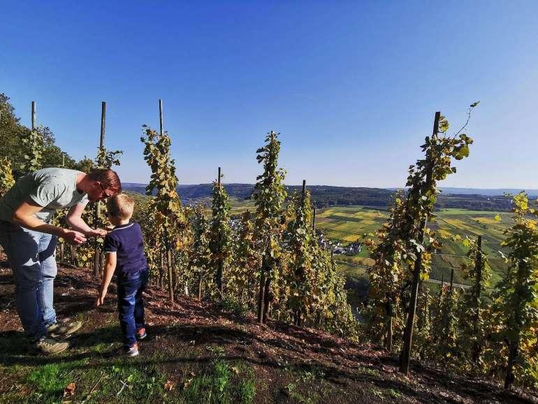 herfstvakantie Moezel Uitzicht wijngaard Bregblogt.nl