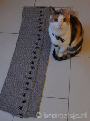 Kattenmand Breien Patroon Van Shiridesigns Breimeisjenl