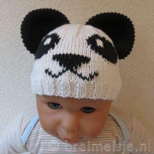 Muts panda breien patroon