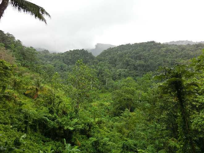 Tag 2 auf der Kreuzfahrt mit der Starclippe durch die Karibik 4