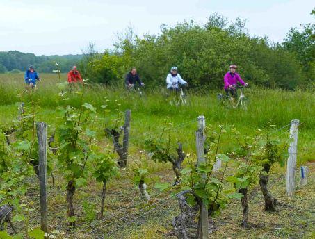 20160614 Loire-Radweg breitengrad53 LEhlers (38 von 46)