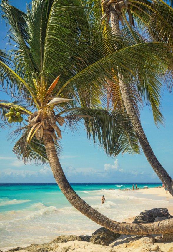 Barbados, Strand 01, Foto Martin Cyris