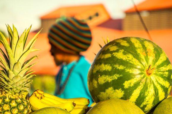 Früchte, Foto Martin Cyris