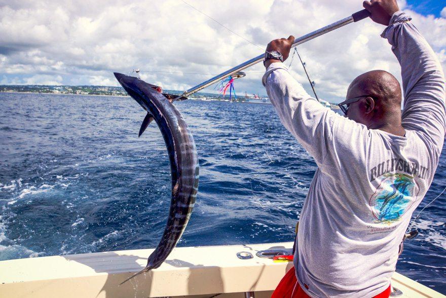 Urlaub auf Barbados - Martin Cyris